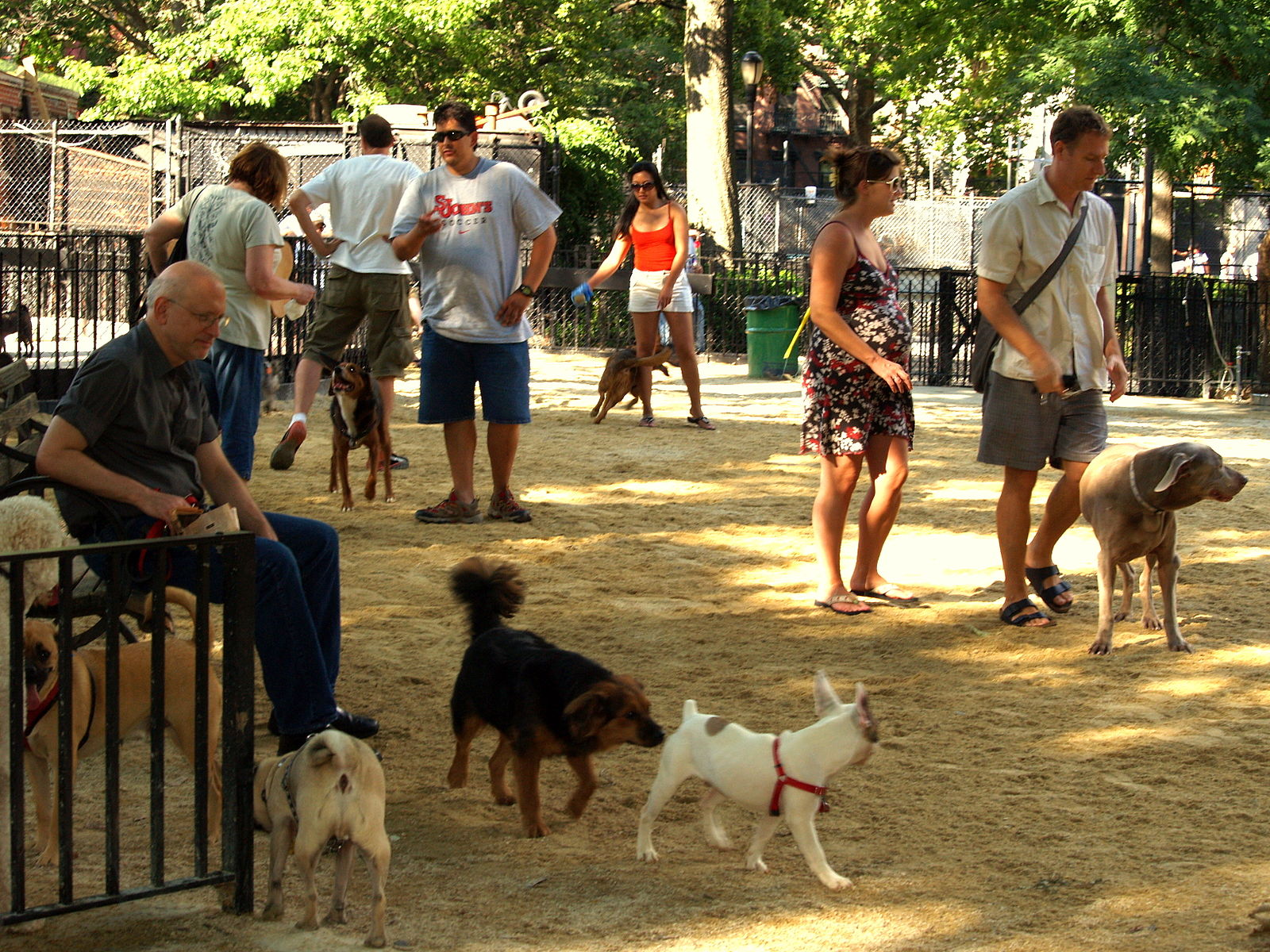 Demand for private dog parks is growing, and owners are willing to pay David Shankbonecreator QS:P170,Q12899557,Tompkins Square Big Dog Run,CC BY-SA 3.0
